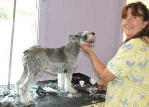 Cindy with schnauzer