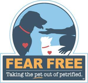 fear-free