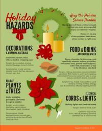 Holiday Hazards