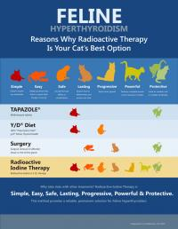 Radioiodine Therapy
