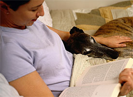 If your dog shows signs of grieving, give him or her more attention and affection
